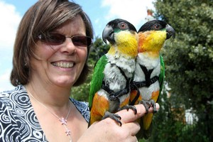 Jane Hartley with her parrots